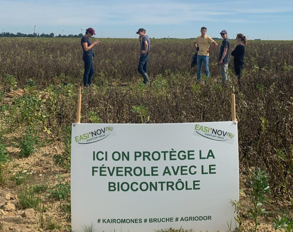 Agriodor développe le biocontrôle en agriculture